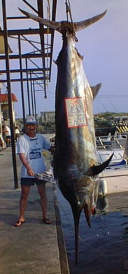 It took 17 years for a bigger black marlin to be caught. 843 lbs.